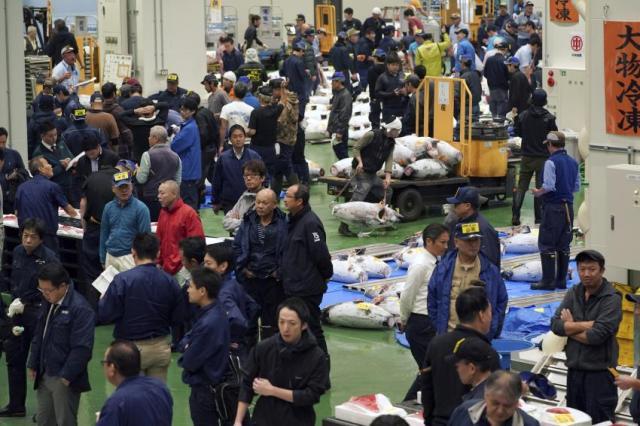Új helyszínre költözött a világ legnagyobb halpiaca