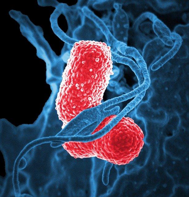 Minden 39. másodpercben meghal egy gyerek tüdőgyulladásban a világon