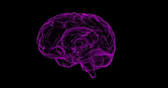 Az elhízott embereknek kisebb lehet az agyuk
