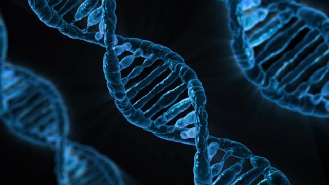 Szakmai fórumon is elítélték a génszerkesztett gyermeket létre hozó kutatást