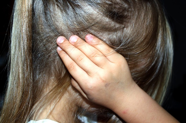 A gyerekbántalmazásról folytattak eszmecserét szakemberek Pozsonyban