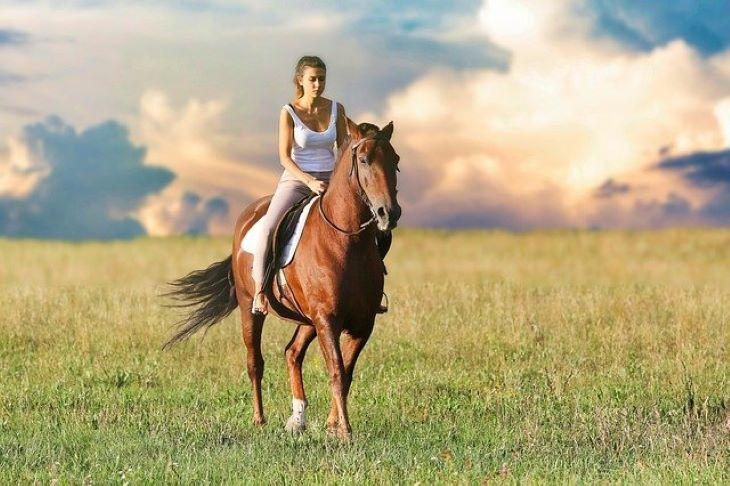 Jobban érthetik a lovak, ha úgy beszélnek hozzájuk, mint a kisgyerekekhez